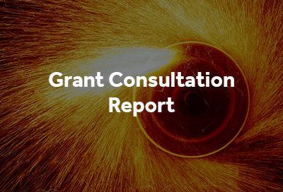Grant Consultation Report button