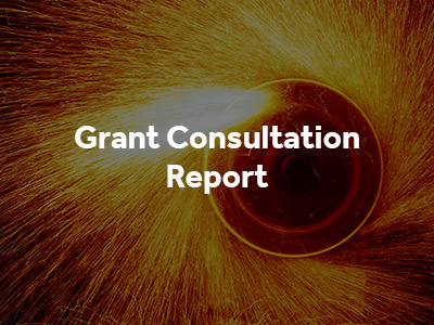 Grant Consultation Report button