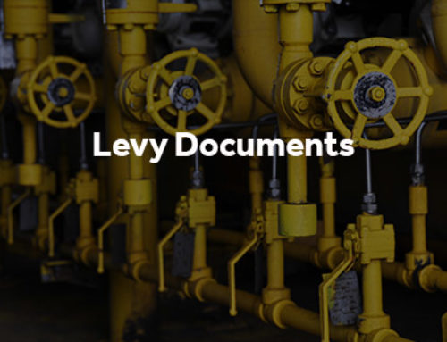 Levy documents