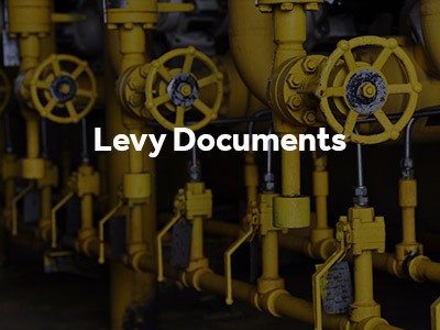 Levy Documents button