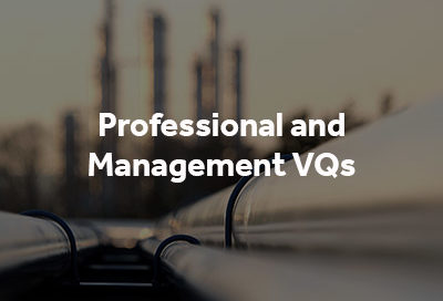 Professional and Management VQs button with pipeline image