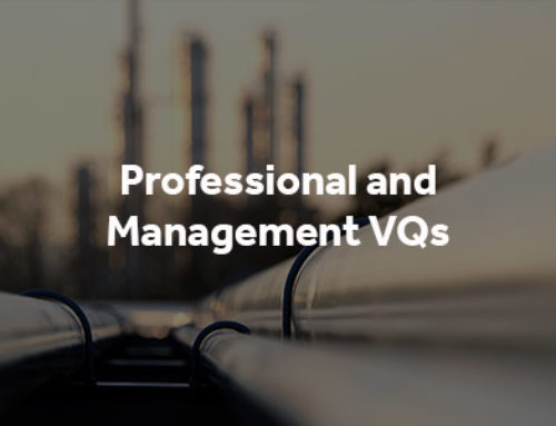 Professional and Management VQs