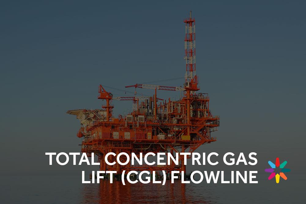 Total concentric gas lift case study button