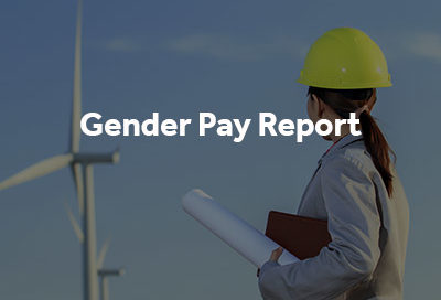 Gender Pay Report button